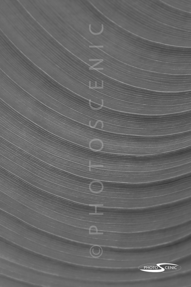Abstract_black_and_white_photos_098.jpg