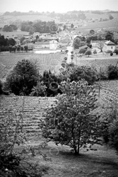 Fronsac_Black_and_White_Photo_001.jpg