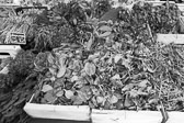 Market_Display_in-France_Black_and-White_Photos008.jpg