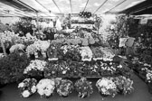 Market_Display_in-France_Black_and-White_Photos010.jpg