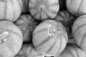 Market_Display_in-France_Black_and-White_Photos014.jpg
