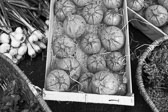 Market_Display_in-France_Black_and-White_Photos016.jpg