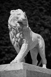 Paris_Statues_and_Sculptures_Black_and_White_Photos_026.jpg