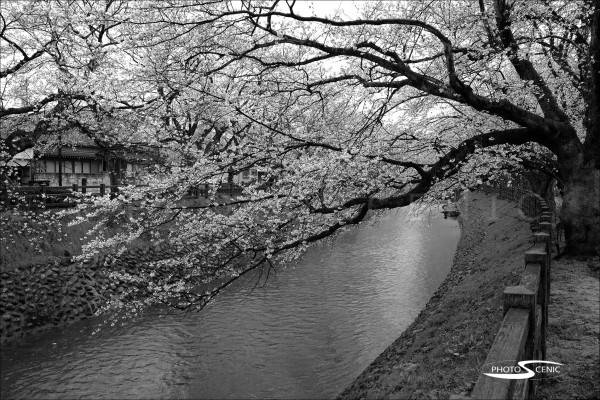 Japan_Black_and_White_Photos_002.jpg