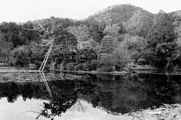 Japan_Black_and_White_Photos_009.jpg