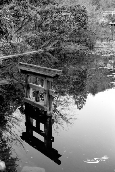 Japan_Black_and_White_Photos_010.jpg
