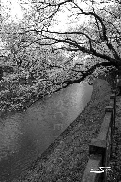 Japan_Black_and_White_Photos_031.jpg