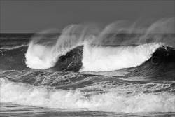 Manly_Beach_Surfing_Black_and_White_Photos_011.jpg