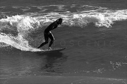 Manly_Beach_Surfing_Black_and_White_Photos_031.jpg
