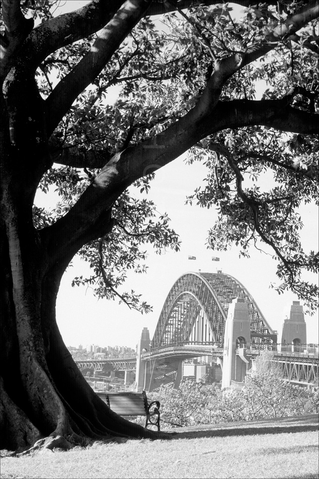 Sydney_Black_and_White_Photos_044.jpg