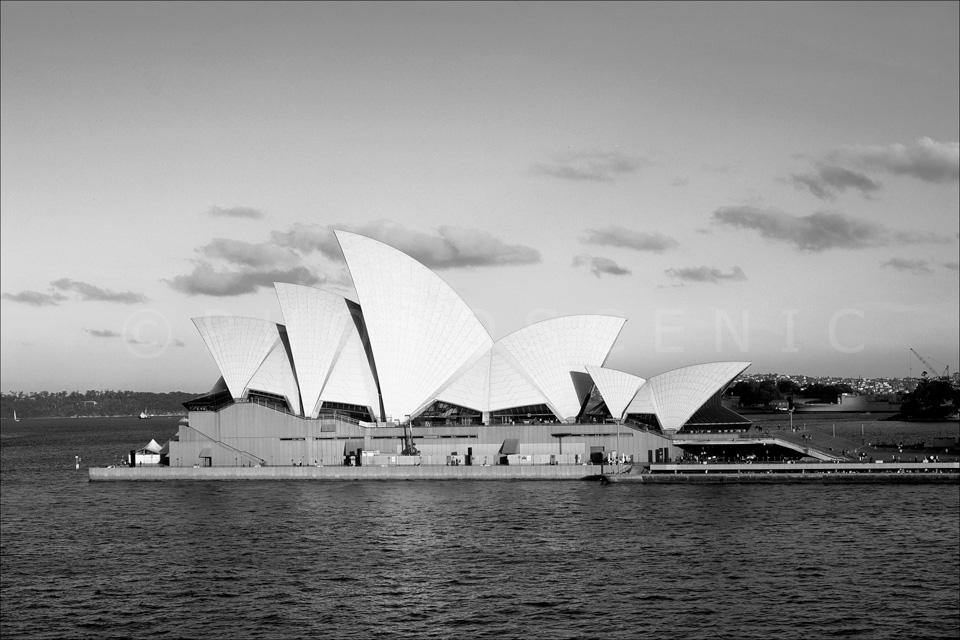 Sydney_Black_and_White_Photos_081.jpg