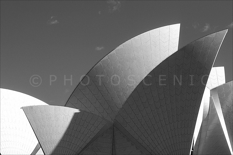 Sydney_Black_and_White_Photos_084.jpg