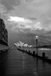 Sydney_Black_and_White_Photos_058.jpg