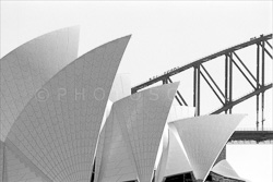 Sydney_Black_and_White_Photos_071.jpg