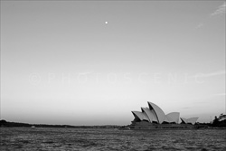 Sydney_Black_and_White_Photos_122.jpg