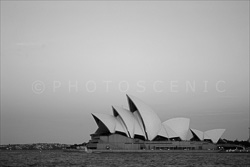 Sydney_Black_and_White_Photos_123.jpg