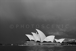 Sydney_Black_and_White_Photos_124.jpg