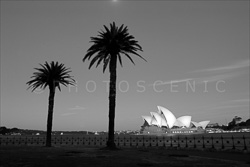 Sydney_Black_and_White_Photos_125.jpg