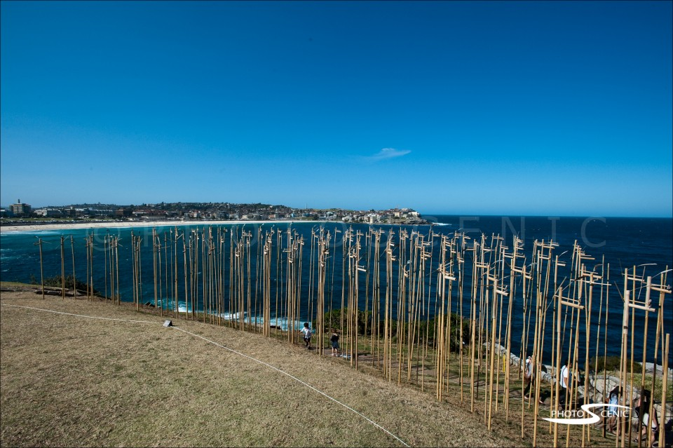 Sculpture By The Sea,Bondi Beach
