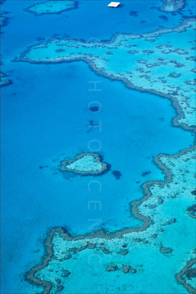 The_Great_Barrier_Reef_Scenic_Colour_Photos_008.jpg