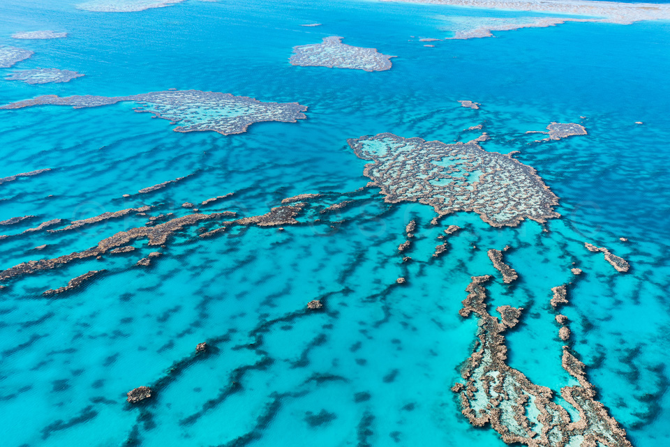 The_Great_Barrier_Reef_Scenic_Colour_Photos_017.jpg