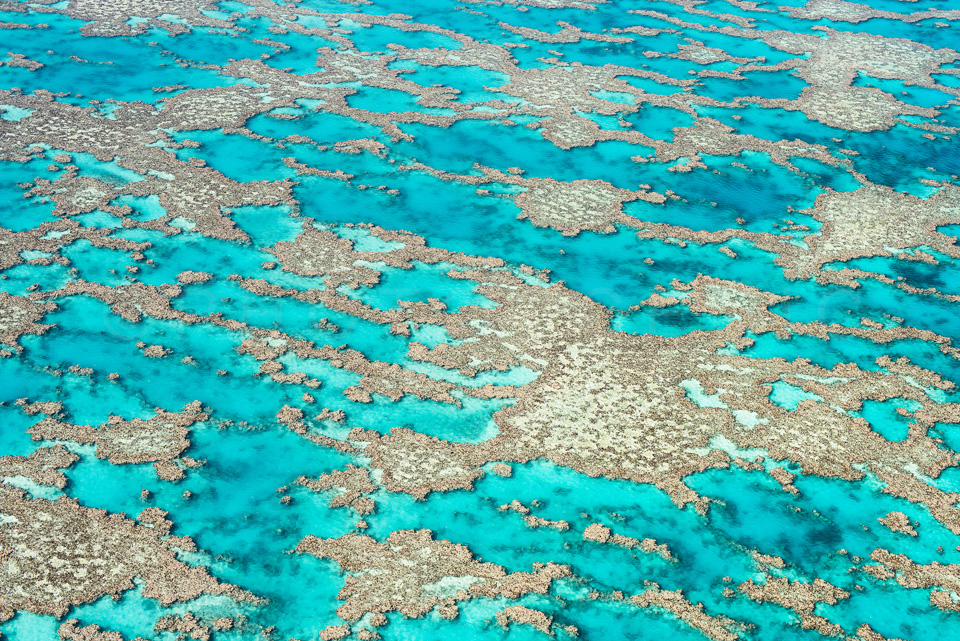 The_Great_Barrier_Reef_Scenic_Colour_Photos_026.jpg