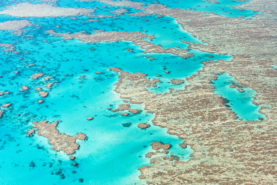 The_Great_Barrier_Reef_Scenic_Colour_Photos_032.jpg