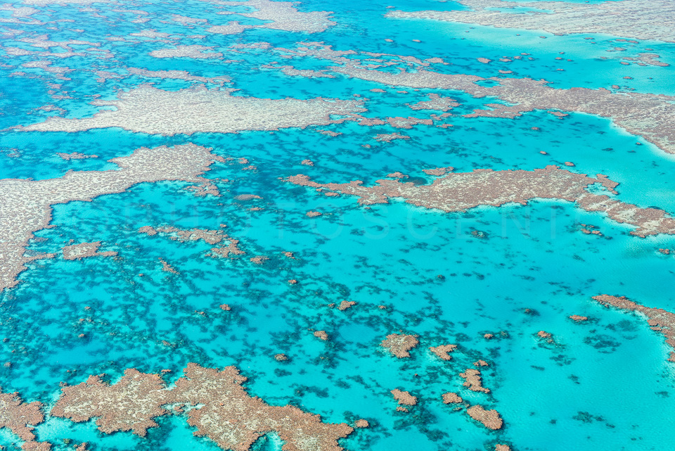 The_Great_Barrier_Reef_Scenic_Colour_Photos_033.jpg