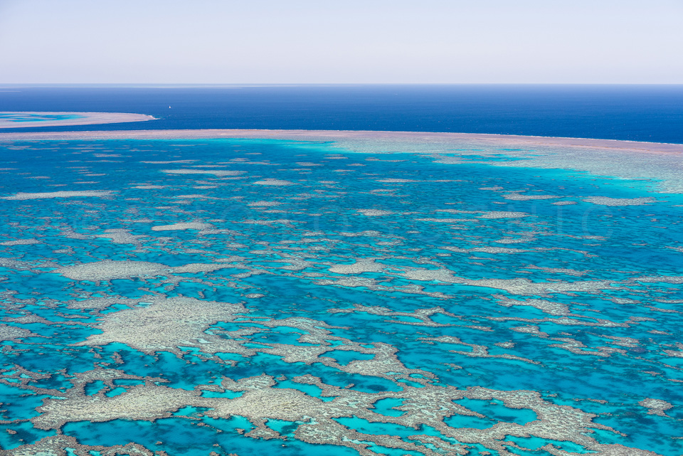 The_Great_Barrier_Reef_Scenic_Colour_Photos_036.jpg