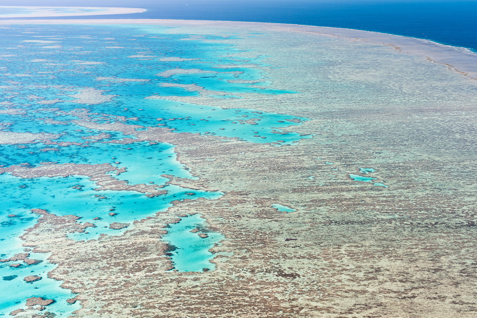 The_Great_Barrier_Reef_Scenic_Colour_Photos_038.jpg