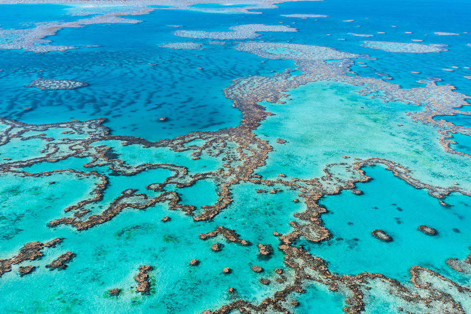 The_Great_Barrier_Reef_Scenic_Colour_Photos_039.jpg
