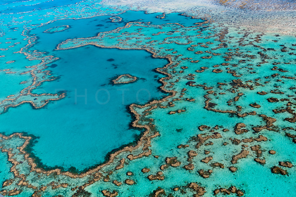 The_Great_Barrier_Reef_Scenic_Colour_Photos_046.jpg