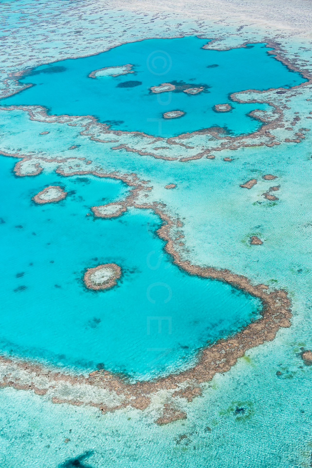 The_Great_Barrier_Reef_Scenic_Colour_Photos_050.jpg