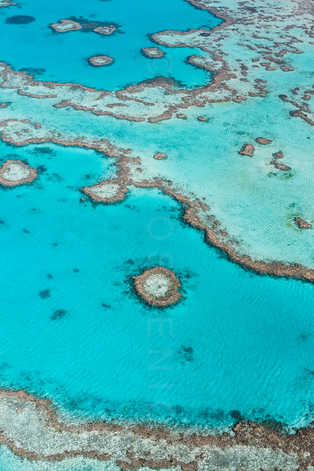 The_Great_Barrier_Reef_Scenic_Colour_Photos_051.jpg
