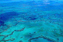 The_Great_Barrier_Reef_Scenic_Colour_Photos_006.jpg