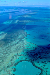 The_Great_Barrier_Reef_Scenic_Colour_Photos_010.jpg