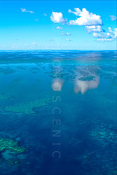 The_Great_Barrier_Reef_Scenic_Colour_Photos_012.jpg