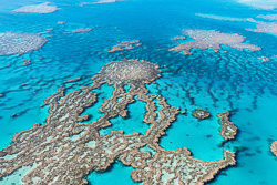 The_Great_Barrier_Reef_Scenic_Colour_Photos_016.jpg