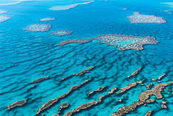The_Great_Barrier_Reef_Scenic_Colour_Photos_020.jpg