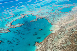 The_Great_Barrier_Reef_Scenic_Colour_Photos_044.jpg