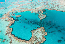 The_Great_Barrier_Reef_Scenic_Colour_Photos_045.jpg