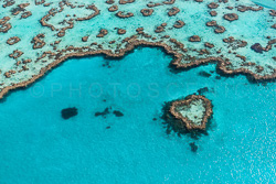 The_Great_Barrier_Reef_Scenic_Colour_Photos_047.jpg
