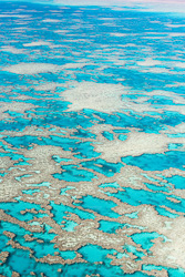 The_Great_Barrier_Reef_Scenic_Colour_Photos_049.jpg