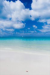 Whitehaven_Beach_Scenic_Colour_Photos_022.jpg