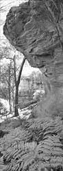 NSW_Panoramic_BW_Photos005.jpg