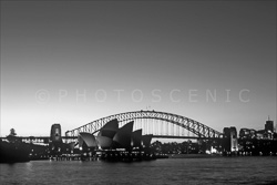 Sydney_Black_and_White_Photos_036.jpg