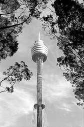 Sydney_Black_and_White_Photos_045.jpg