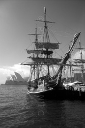 Sydney_Black_and_White_Photos_049.jpg