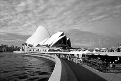 Sydney_Black_and_White_Photos_067.jpg