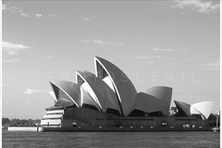 Sydney_Black_and_White_Photos_082.jpg